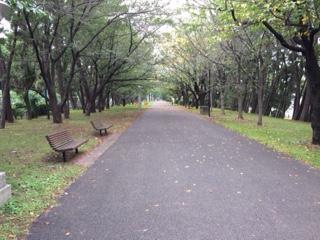 ⑪辰巳緑道公園