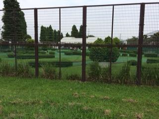 ③パターゴルフ