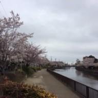 ③ 006新川