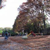 ベビさんぽ ~小金井公園~