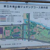 東京さんぽNo.30  ~木場公園~